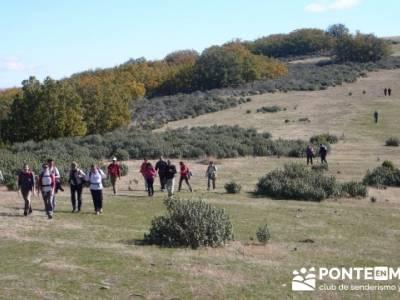Conoce senderistas caminando, Parque Natural del Hayedo de Tejera Negra; el taller excursionista